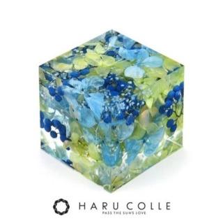 クリスタルアートリウム 3Dハーバリウム